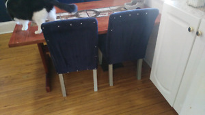 Four blue velvet dining chairs need TLC