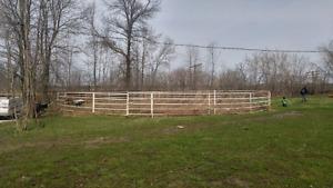 Location de box pour chevaux