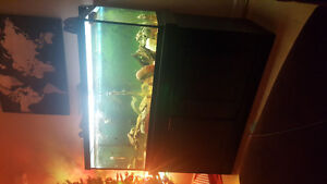 50gl tank and stand.