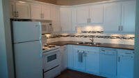 KILLARNEY 3 BDRM 2 BATH COMPLETELY NEW RENOVATION LRT MAY 31/15