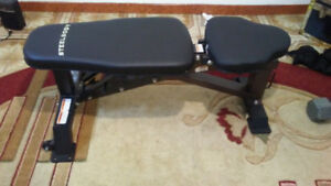 Steel Body work out bench