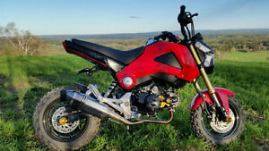 Honda Grom for sale
