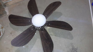fan with light