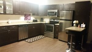 SUBLET JULY 1ST- Newly Renovated 2 Bedroom Apartment