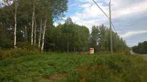 Terrains à vendre Saint Félix d'otis Saguenay Saguenay-Lac-Saint-Jean image 2