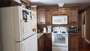 2 Bedroom basement apartment available August 1st, 2017