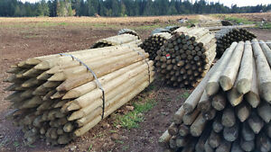 Fence Posts Treated