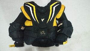Vaughn 2200 Chest Protector and Pants (Both Large)