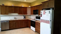 Kitchen Cabinets $3000 OBO Winfield