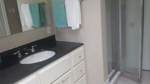 S Windsor 3 bdrm house4 rent- N9G 2X1 - Available now
