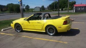 2003 Mustang GT Convertible Canadian Turn Key & Go Car