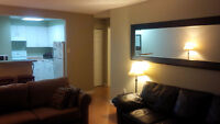 Open-concept furnished one bedroom condo (downtown Kitchener)