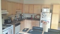 2 furnished bedrooms-for students of professionals