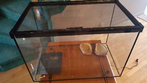Terrarium for reptile