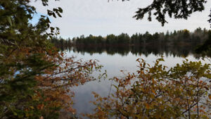 Dream 1.63 Lakefront Treed Lot.  Only 30 Minutes to Halifax.