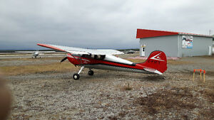Avion Cessna 140 multi