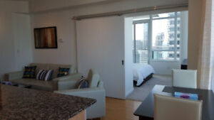 August: Furnished downtown apartment next to Union, Financial