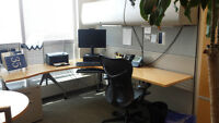 EXECUTIVE OFFICE SUITES BY HERMAN MILLER ONLY 595.00 City of Toronto Toronto (GTA) Preview