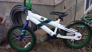 "16"" Canucks bike"