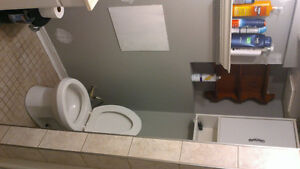 Sublet available January to May Kitchener / Waterloo Kitchener Area image 10
