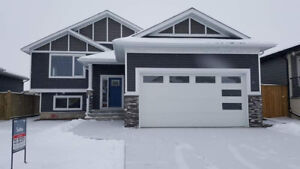 Brand NEW fully developed 4dbrm bi-level with attached 2 garage