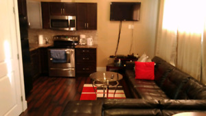 2 Bedroom Basement Suite available in Parsons Creek $1650