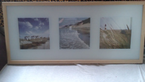 Two framed pictures $ 10 each