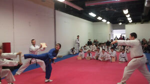 After-School Martial Arts: We pick up at school! Kitchener / Waterloo Kitchener Area image 4