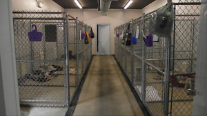 Boarding Kennel Package Dog Runs FOR SALE Excellent Condition