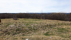 400 acres of  good hay land to be cut or you bring your cattels Williams Lake Cariboo Area image 2