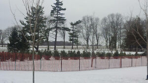 Wooden Snow Fence with 'T' Posts