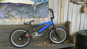 Trek BMX at Lumpy Bikes Sale Price $75!