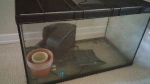 10 gallon aquarium with filter and lid
