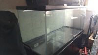 70 gallon fish tank and stand