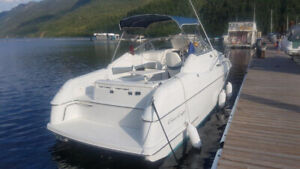 2009 Bravo 3 w/ Mercury 454 26' Chris craft Sunbridge Cruiser