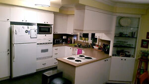 Kitchen cabinets & counter top - NEW LOWER PRICE