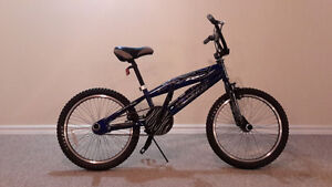 "Heavy Duty Pro Model 20"" Racing BMX bike"