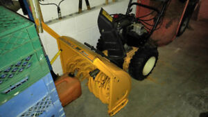 Take control over mother nature with this fantastic snowblower.