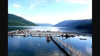 BC Lake Vacation Property for sale