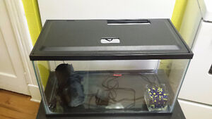 10 Gallon Fish Tank & Stand in Great Condition