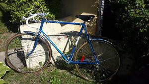 Grand vélo de route 10 vitesse excellente condition
