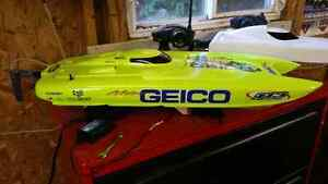 Miss geico 29