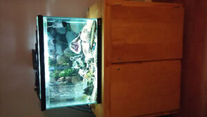 54 gallon fish tank and stand and everything