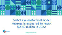 Global eye anatomical model market research