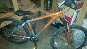 Trek 8 speed mountain bike
