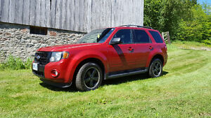 2009 Ford Escape XLT Sport SUV