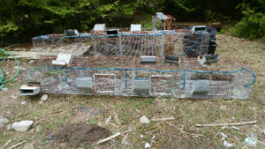 Rabbit cages with feeders and water bottles
