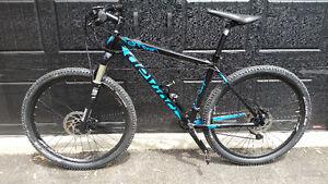 Vélo de montagne Devinci Darwin XP 2016 large