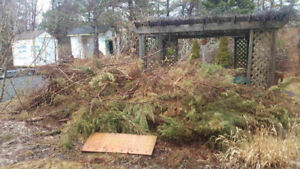Tree/Brush Removal & Best Rates On Junk Removal Services $ave