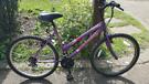 "Universal Wild Thing 26"" wheels Ladies womens bike bicycle"